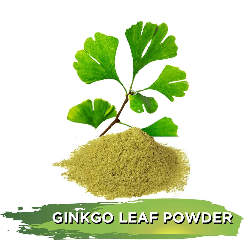 Organic Ginkgo Powder - 8oz