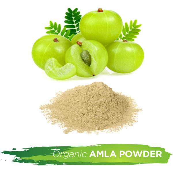 Wholesale Amla Powder