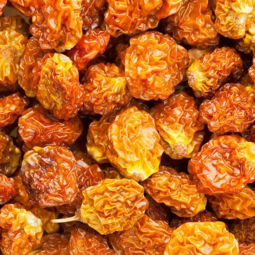 Buy Goji Berries