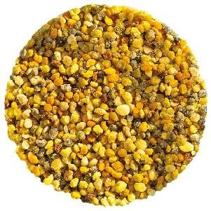 bee pollen granules 300x300px