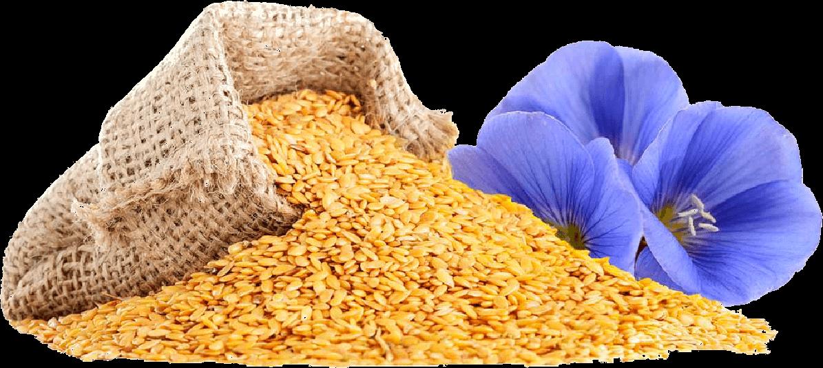 Best Flaxseeds Online