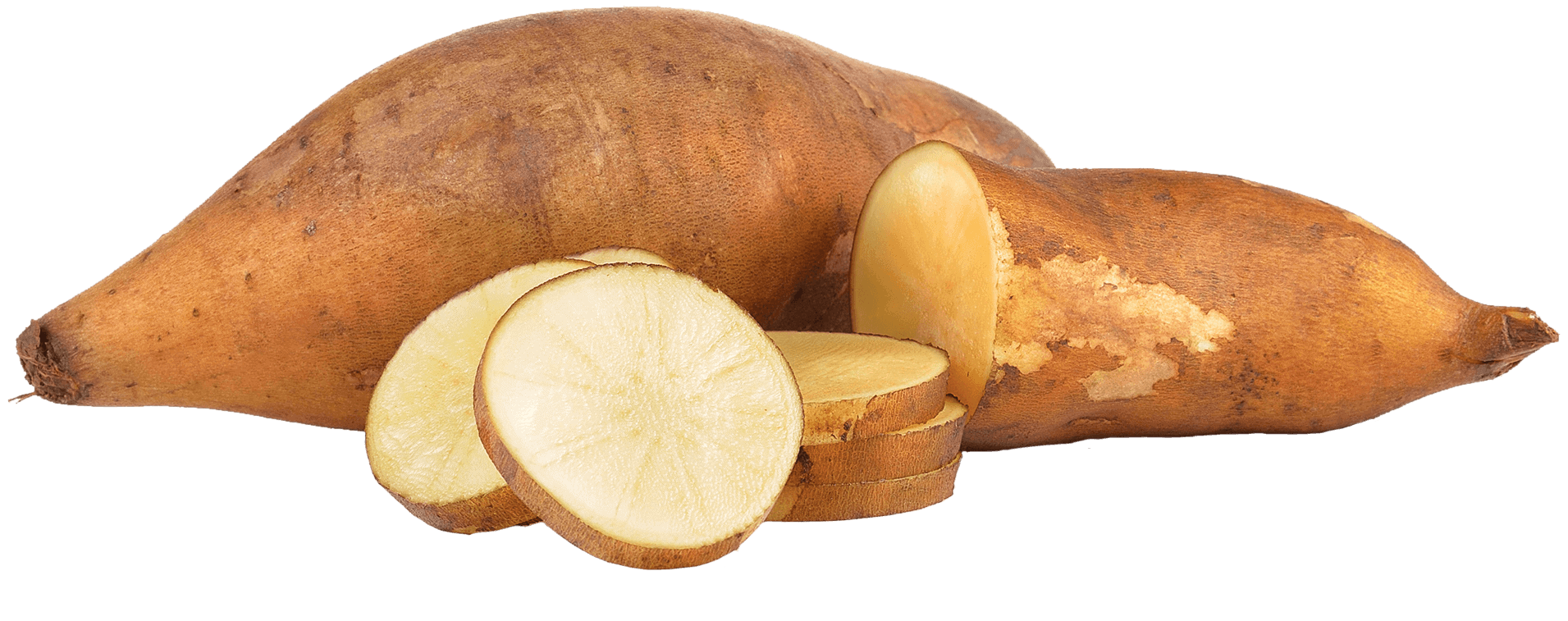 Organic Yacon Products