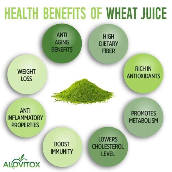 Wheat Grass Juice Powder Benefits