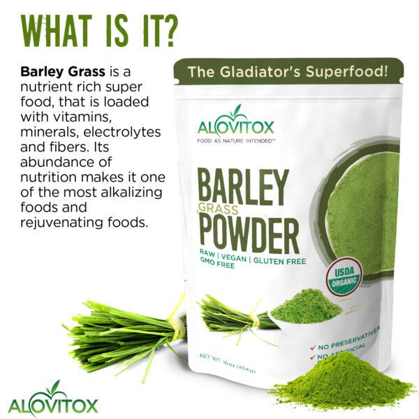Barley Grass Powder 16oz 05a