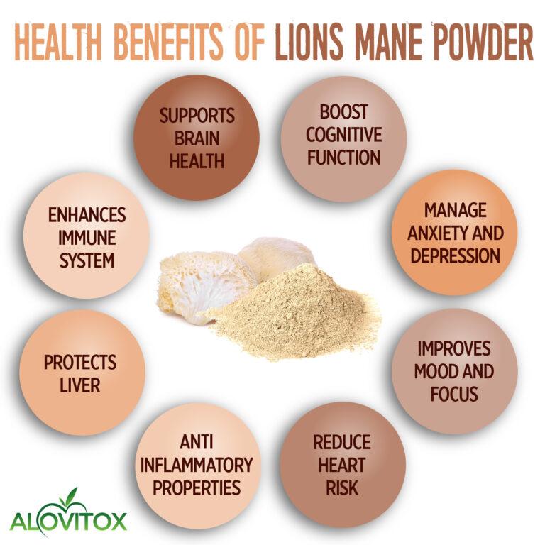 Lions Mane Powder 01