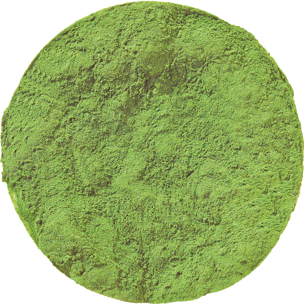 Natural Spinach Powder Online