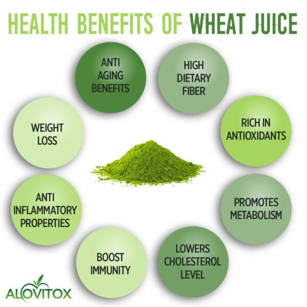 wheat grass juice powder 01