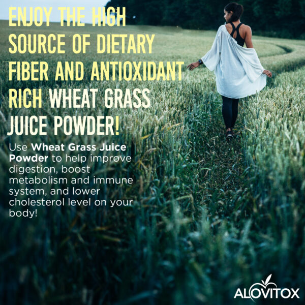wheat grass juice powder 02