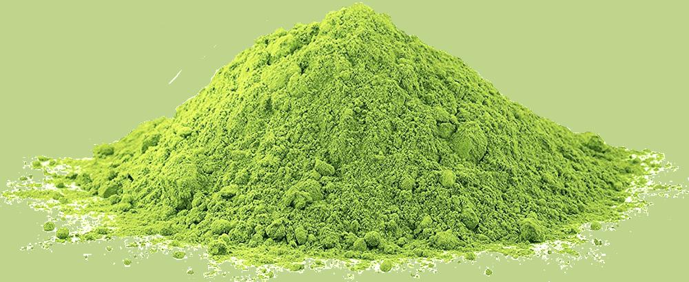Organic Maqui Powder