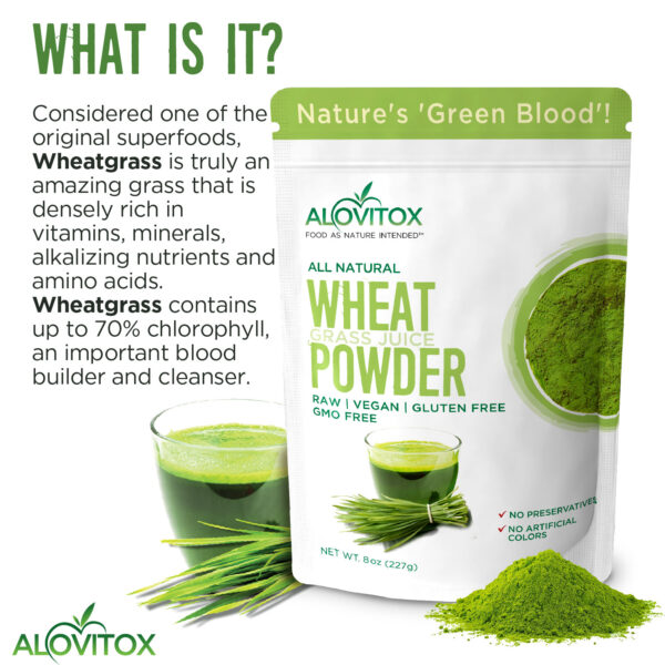 wheat grass juice powder 8oz 05a