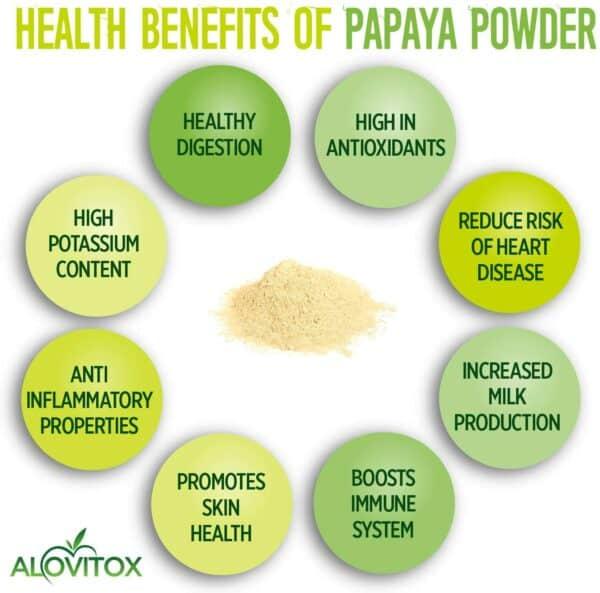 Organic Green Papaya Powder