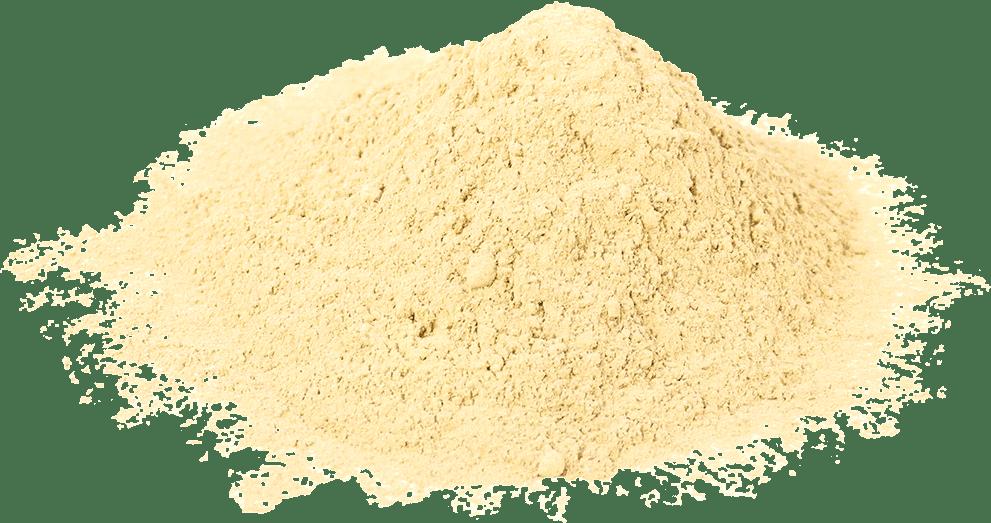 Natural Green Papaya Powder