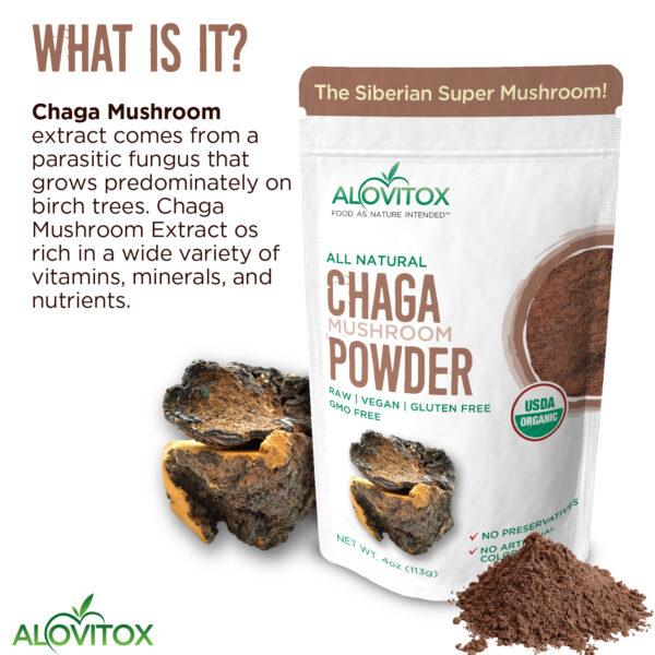 Chaga Powder 4oz 05a