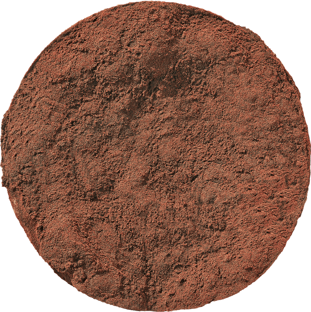 Chaga Mushroom Powder