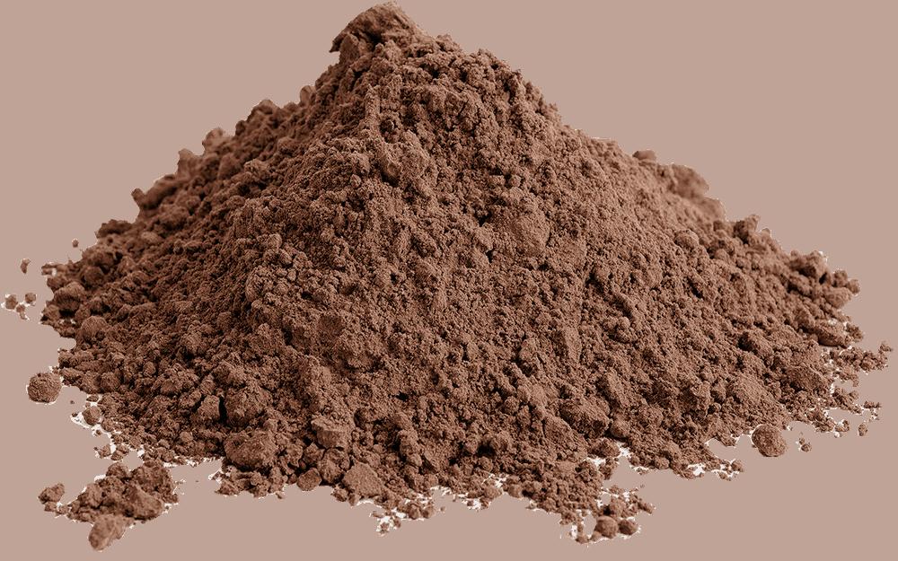 Online Buy Chaga Mushroom Powder