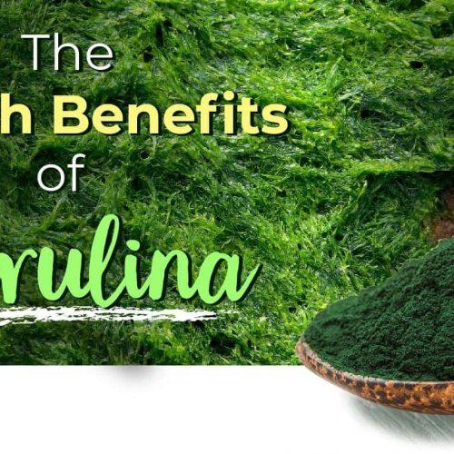 Spirulina_Health_Benfits.jpg?v=1544558220