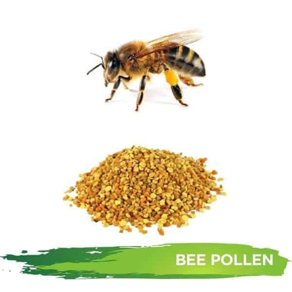 Bee Pollen Granules
